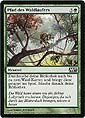 Magic the Gathering - 2013 Hauptset - Pfad des Waldläufers