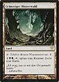 Magic the Gathering - Dunkles Erwachen - Grimmiger Hinterwald