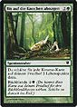 Magic the Gathering - Innistrad - Bis auf den Knochen Abnagen