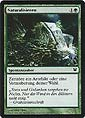 Magic the Gathering - Innistrad - Naturalisieren