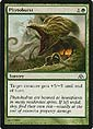 Magic the Gathering - Labyrinth des Drachen - Phytoburst